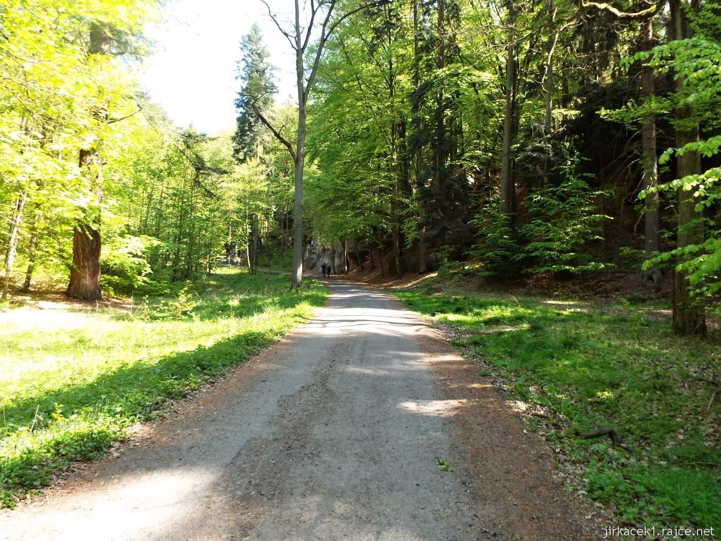 Hruboskalsko - cesta z arboreta Bukovina k Adamově loži
